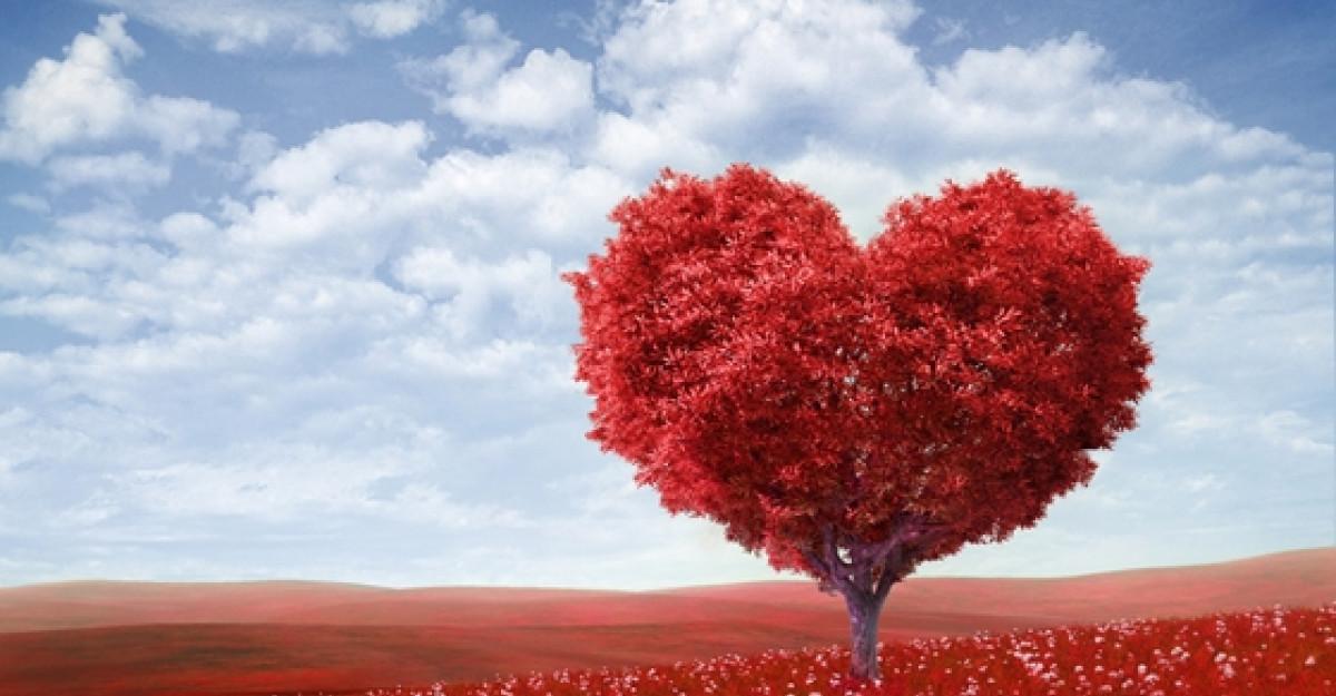 Alfabetul dragostei: Cele mai frumoase citate despre iubire dupa Rudy Francisco