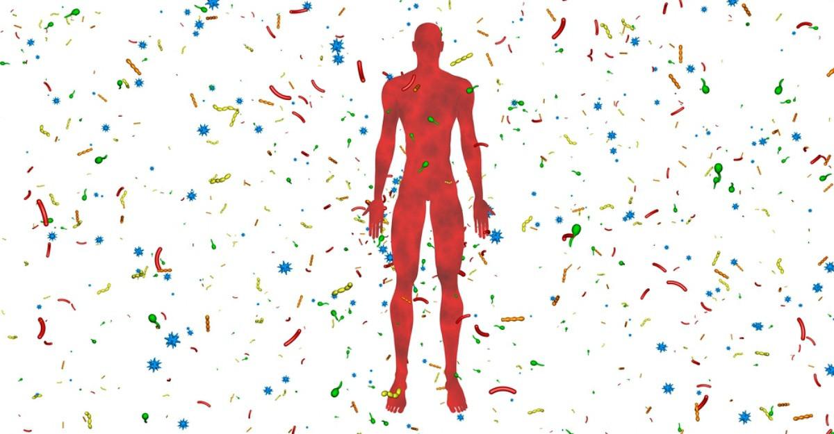 Microbiomul:Universul incredibil din colonul uman, legătura dintre imunitatea, anxietate, cancer și ceea ce mâncam