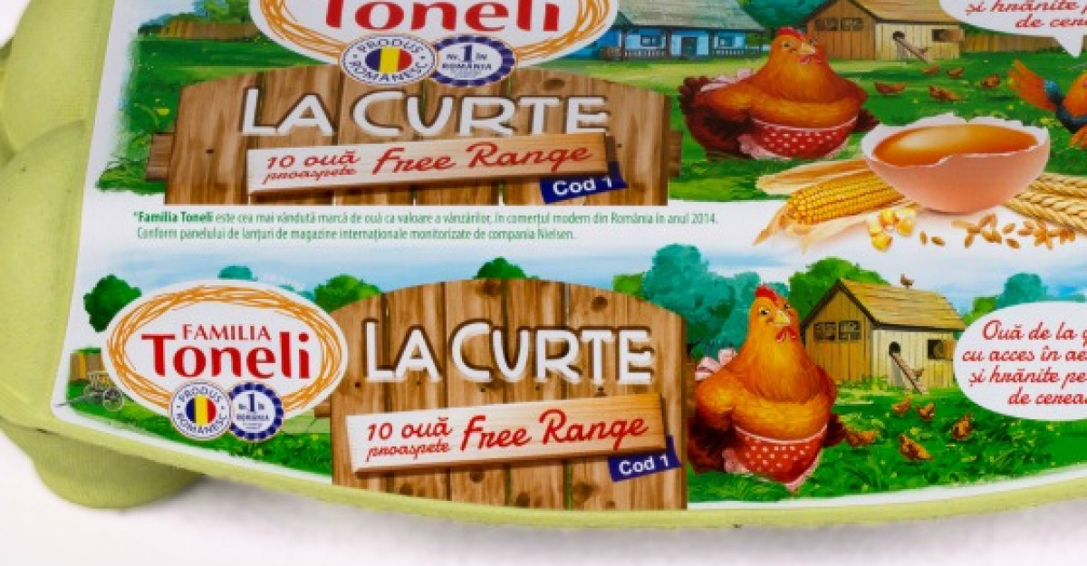 Toneli Holding - Compania care lanseaza produsul La curte