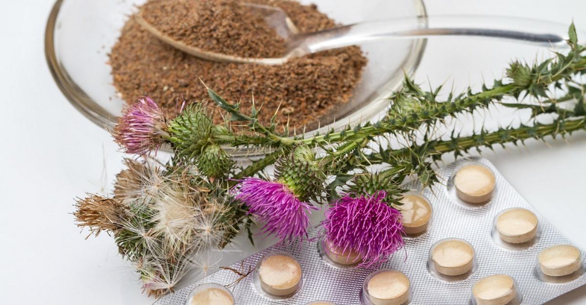 Silimarina: una dintre cele mai utilizate plante medicinale din lume, cu beneficii multiple pentru sanatate