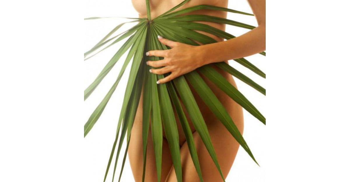 5 Tratamente intensive pe baza de plante pentru SLABIRE