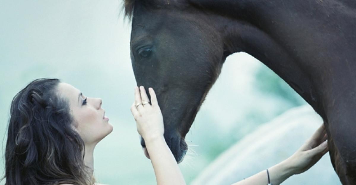 Horoscopul chinezesc pentru 2014: Anul Calului de Lemn