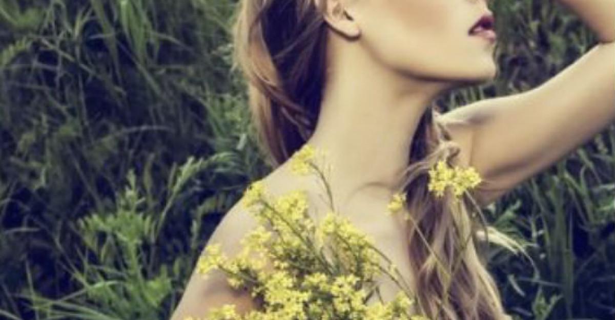 7 plante care alunga stresul si insomniile