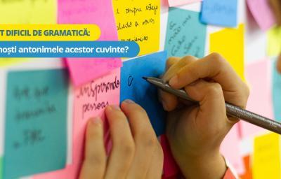 Test dificil de cultura generala: Cunosti antonimele acestor cuvinte?