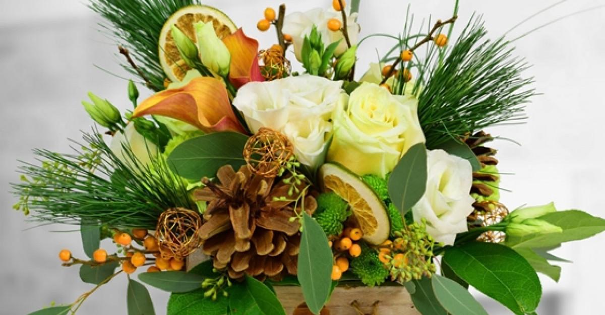Colectia de Craciun Floria.ro: aranjamente cu aroma de portocala, brazi in ghiveci si serviciu de replantare