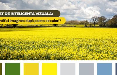 Test de inteligenta vizuala: Identifici imaginea dupa paleta de culori?