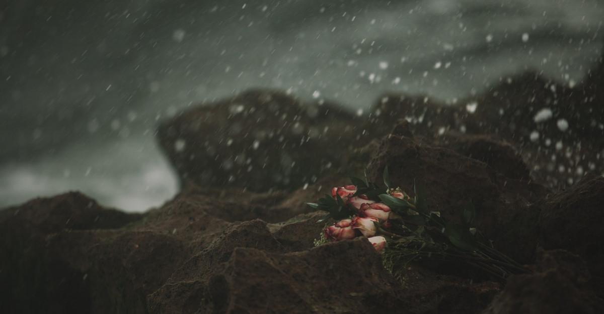 Citate despre dezamagire in dragoste:Opusul dragostei nu este ura, ci indiferenta