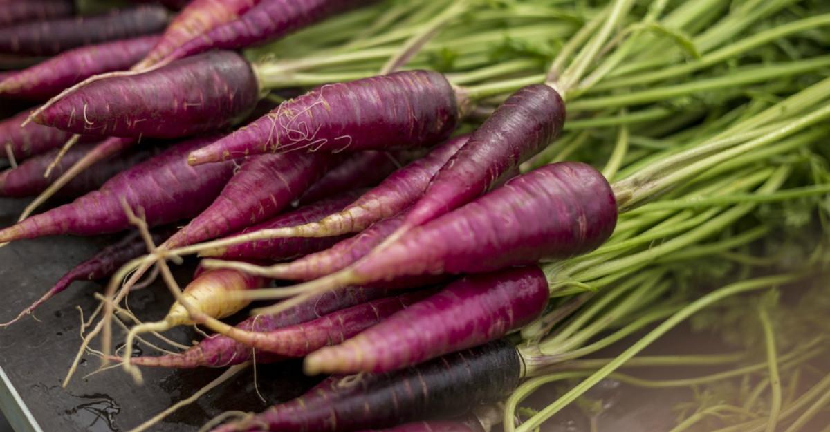 morcovul violet pierde în greutate)