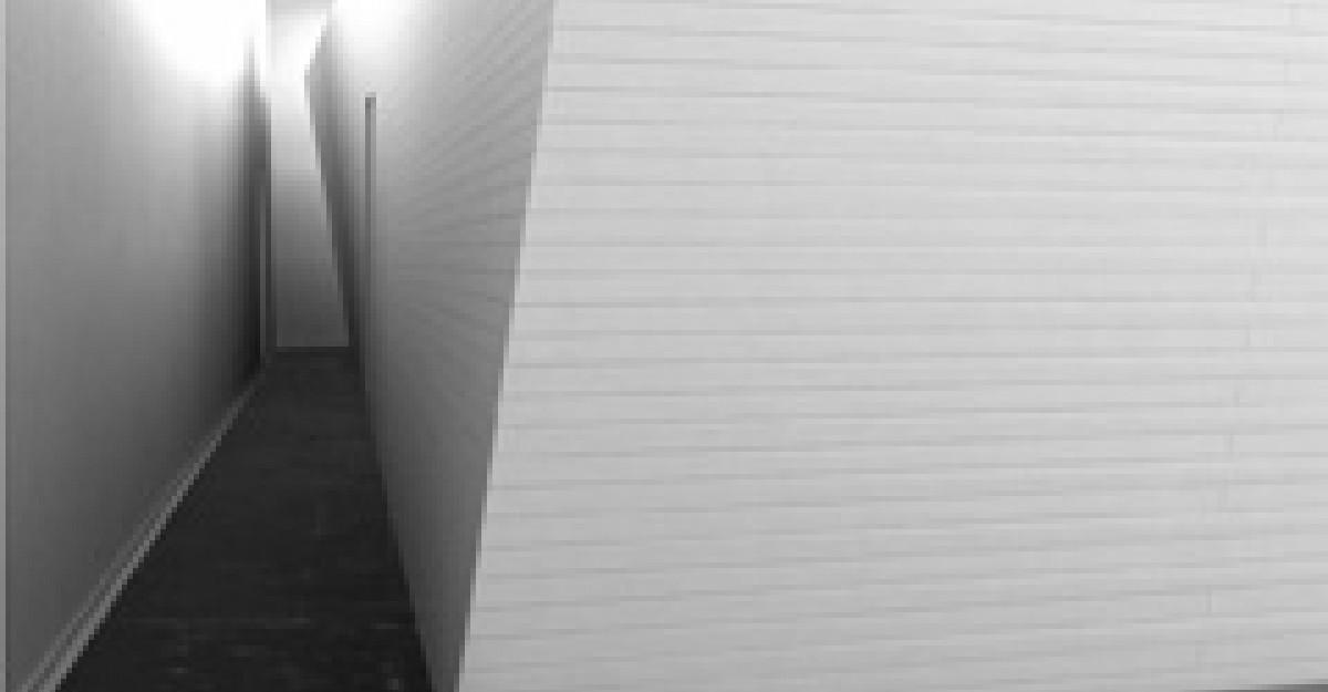 Cum arata Pavilionul Romaniei de la Bienala de Arhitectura 2010?