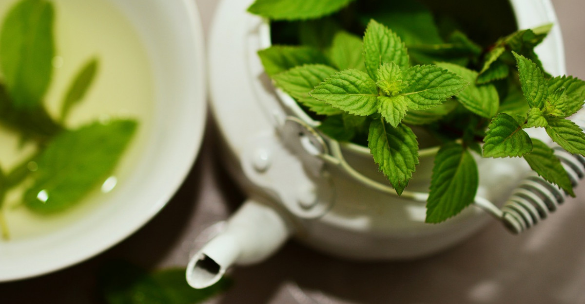 17 Beneficii miraculoase ale consumului de menta