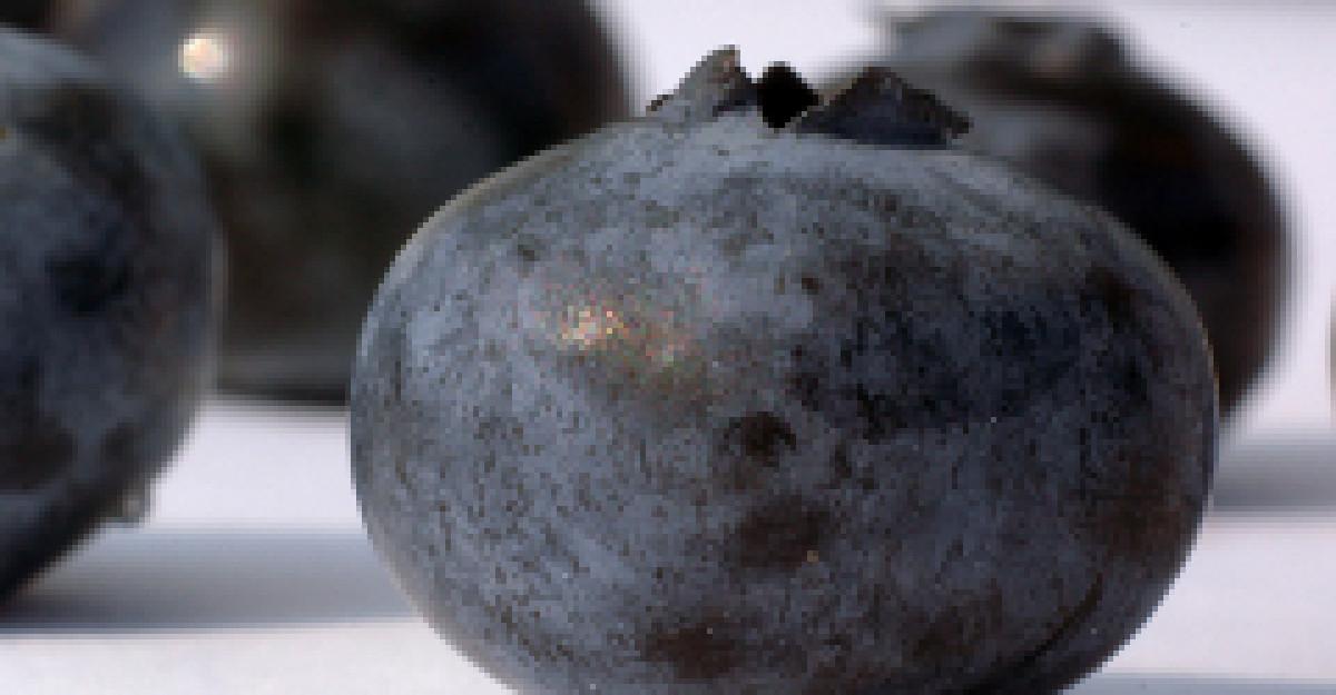 Acai, superfructul cu actiune antioxidanta exceptionala