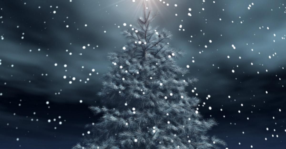 Video getlokal.ro: Sarbatori de iarna!