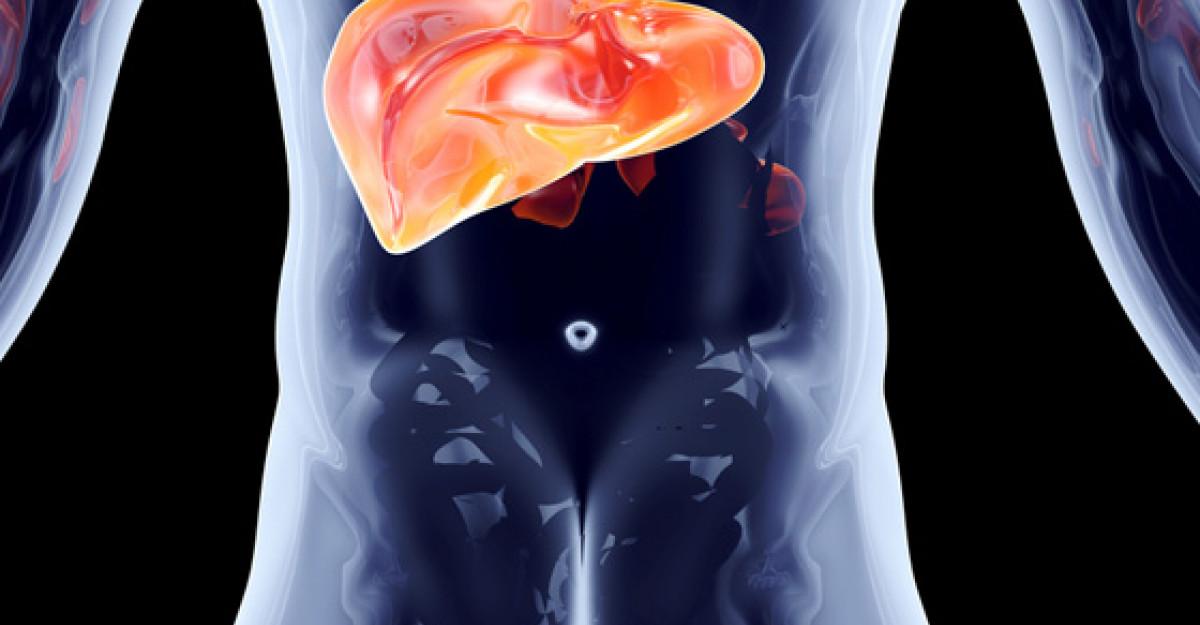Lipsa donatorilor de organe i-a determinat pe cercetatori sa construiasca ficati miniaturali din celule stem