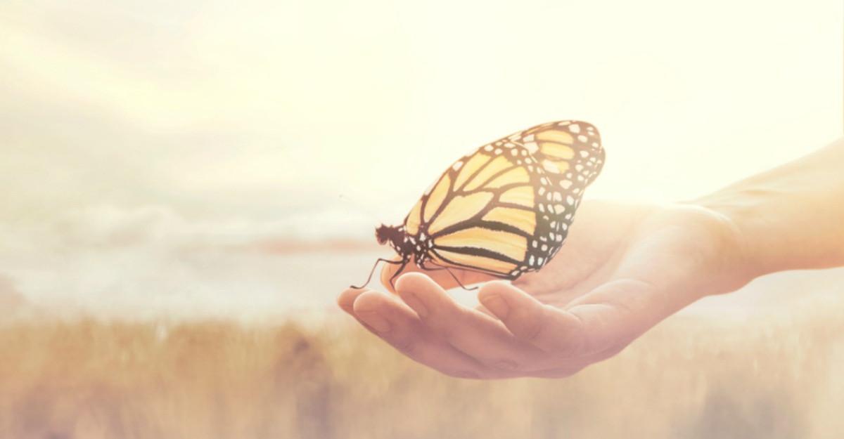 Meditatia activa – ghid de utilizare