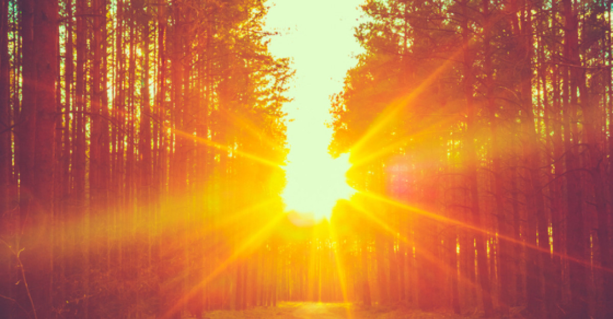 Privind soarele in fata