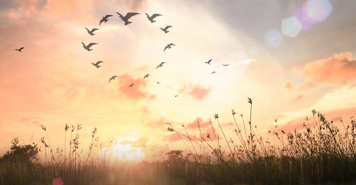 """Cele mai frumoase citate despre speranță: """"Nu lipsi pe nimeni de speranță - poate fi tot ce are"""""""