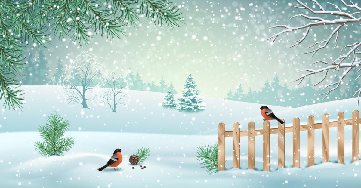 Cele mai frumoase citate despre iarnă: Iarna scoate la iveală tot ce avem mai bun în noi