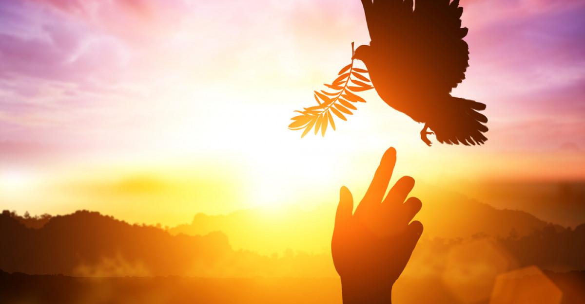 Zece citate care te vor ajuta să îți amintești ce contează în viață