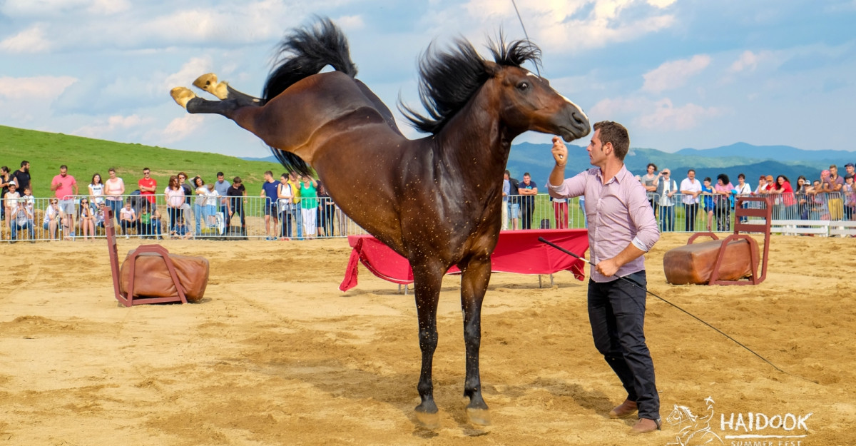 Un festival despre haiduci și cai