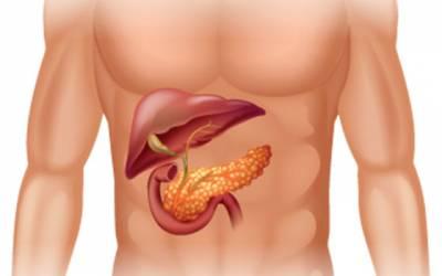 cum să ardeți grăsime din pancreas
