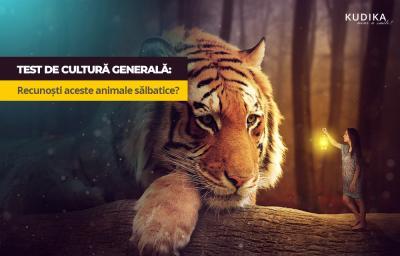 Test de cultura generala: Recunosti aceste animale salbatice?