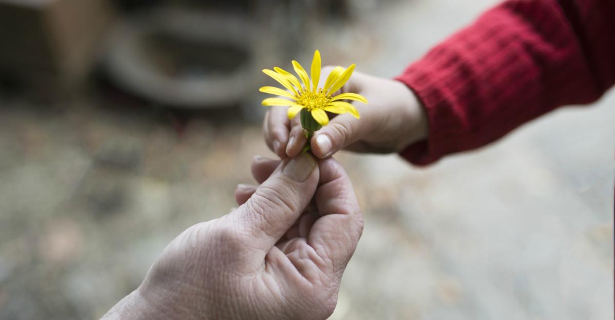 Citate despre bunătate: Nu recunosc alt semn al superiorității decât bunătatea