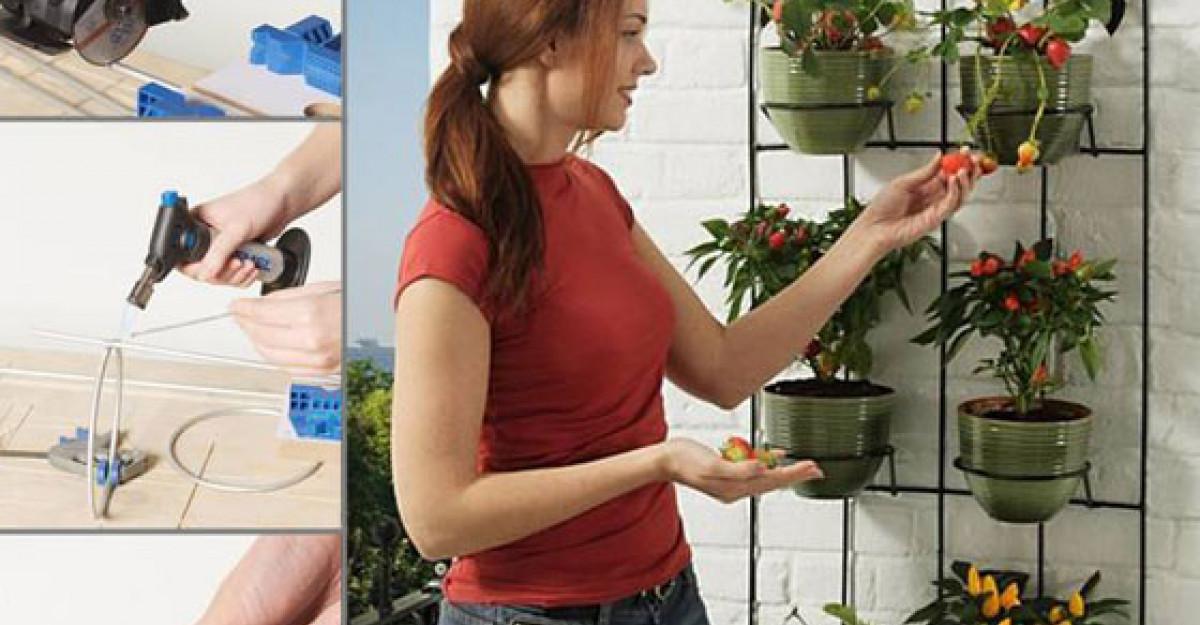 Practic: cum sa decorezi un perete de balcon cu fructe si legume
