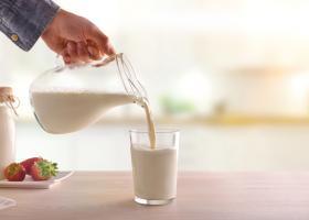 Șase tipuri de lapte și beneficiile lor