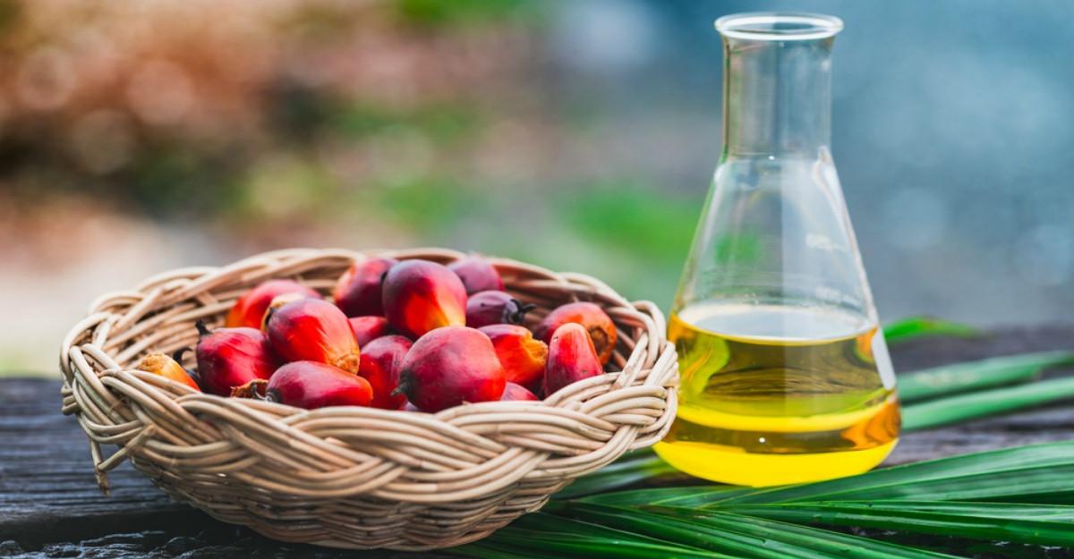 Cat de sanatos este uleiul de palmier?