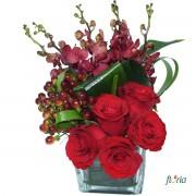 Eleganta florala