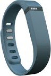 Activity and Sleep Wristband Fitbit Flex (Slate)