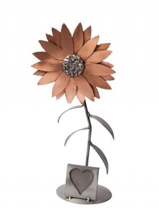 Rama foto - Floarea Soarelui