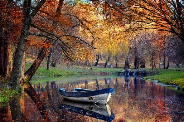 imagini de toamna: toamna pe lac