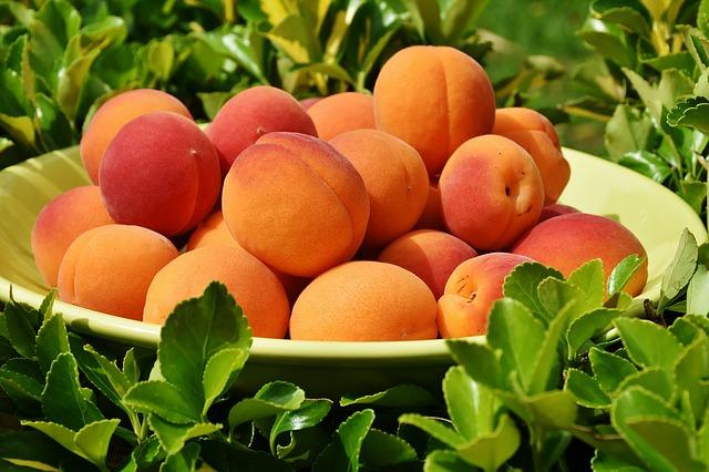 caise beneficii pentru sanatate - nutritie - sfaturi nutritionist