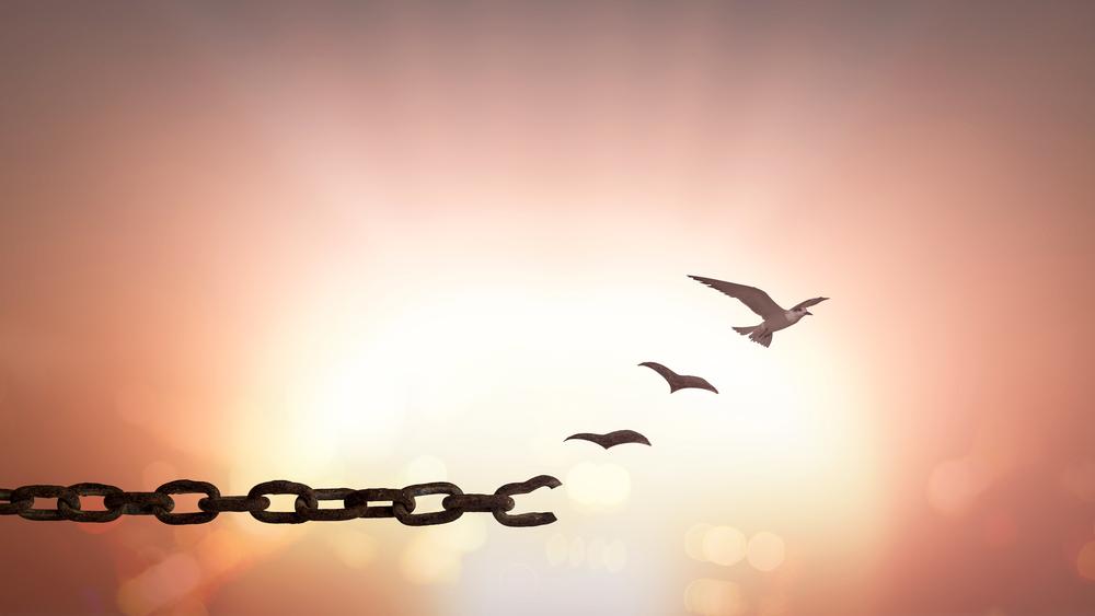 citate despre iertare Citate despre iertare care te vor ajuta sa iti vindeci sufletul citate despre iertare