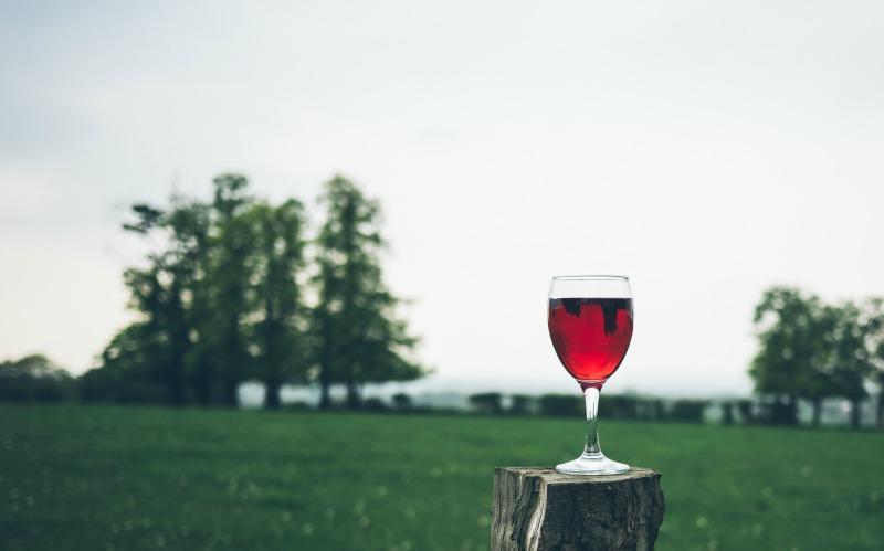 beneficii vin