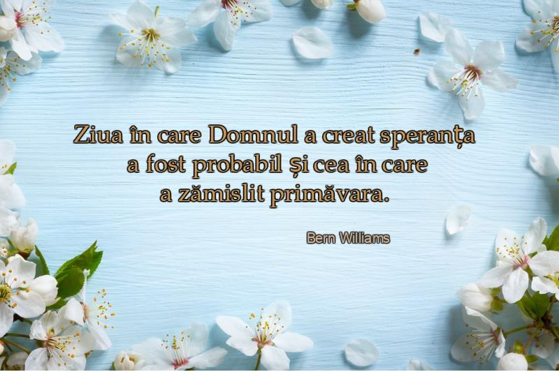citate despre primavara Citate despre primăvară pentru gânduri optimiste citate despre primavara