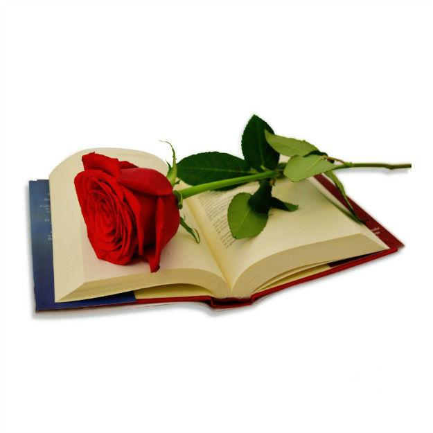 Trandafirul iubirii + carte