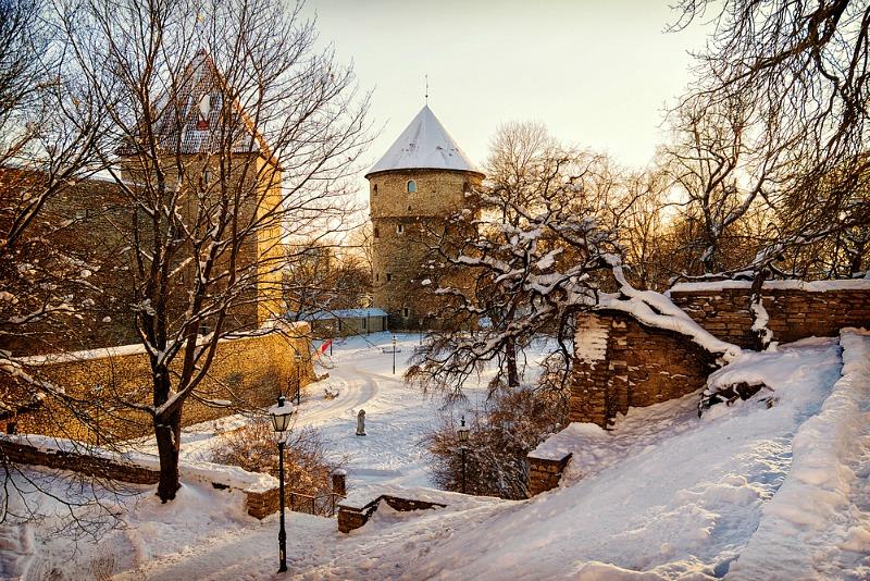 imagini de iarna